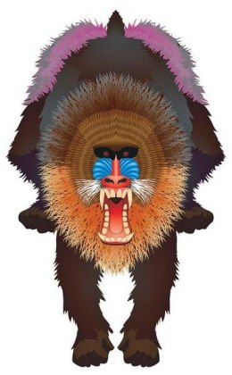 "Latawiec BRAINSTORM - WNS Rainforest 44x28"" Nylon Mandrill"